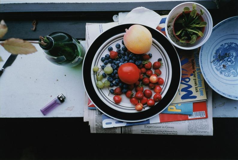 Summer still life 1995